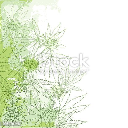 istock Vector outline Cannabis sativa or Cannabis indica or Marijuana bunch. Corner branch, leaves and seed on the pastel green textured background. 956479146