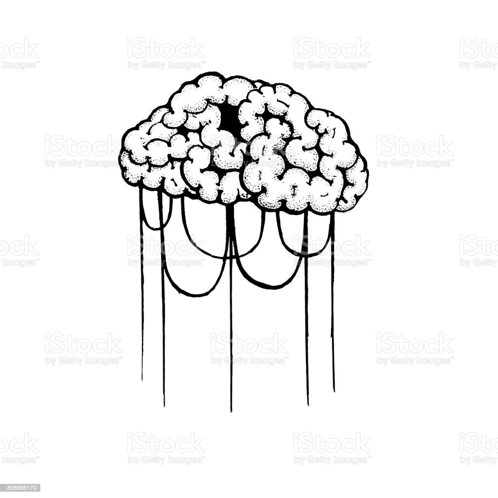 Vector Outline Illustration Of Human Brain And Rope On White