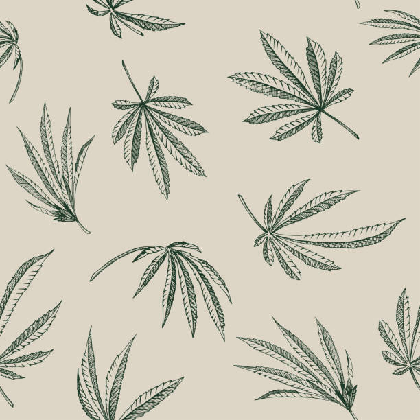 Vector outline Seamless pattern of hemp plant on a beige background cannabis texture Vector outline Seamless pattern of hemp plant on a beige background cannabis texture marijuana stock illustrations