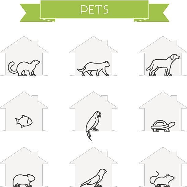 ilustraciones, imágenes clip art, dibujos animados e iconos de stock de marco de vector siluetas de animales domésticos - animales de granja