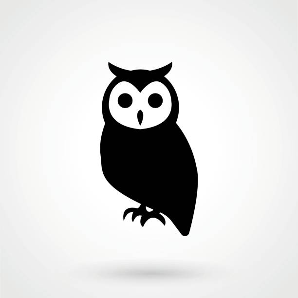 vector owl icon. owl logo - sowa stock illustrations