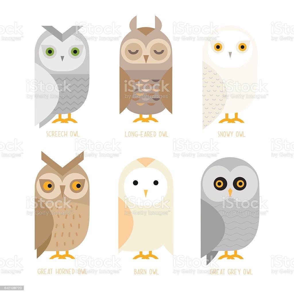 Vector owl set向量藝術插圖