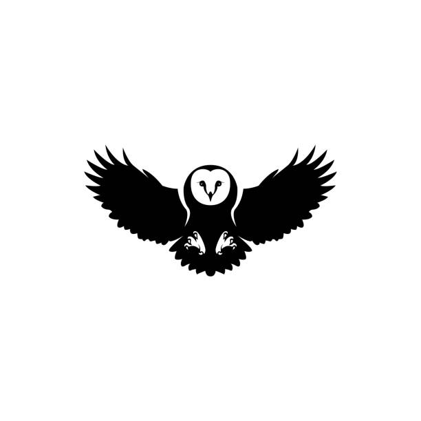 vector owl - sowa stock illustrations