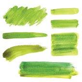 Vector Paint Strokes and Backgrounds
