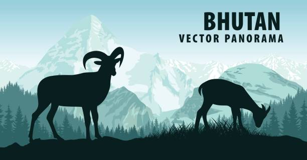 vektor-panorama von bhutan mit himalaja bergziegen - bergziegen stock-grafiken, -clipart, -cartoons und -symbole