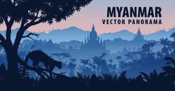 stockillustraties, clipart, cartoons en iconen met panorama van de vector van myanmar met nevelpanter in jungle regenwoud - myanmar