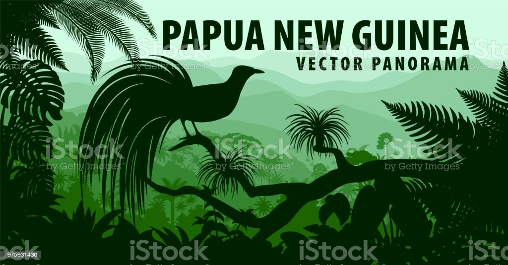 vector panorama of Papua New Guinea with lesser bird of paradise vector art illustration