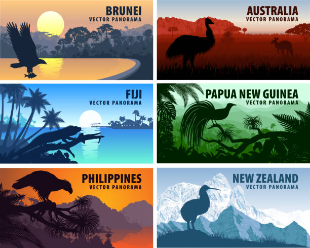 Vector panorama of Philippines, Australia, New Zealand, Brunei Darussalam and Papua New Guinea Vector panorama of Philippines, Australia, New Zealand, Brunei Darussalam and Papua New Guinea bird of paradise plant stock illustrations