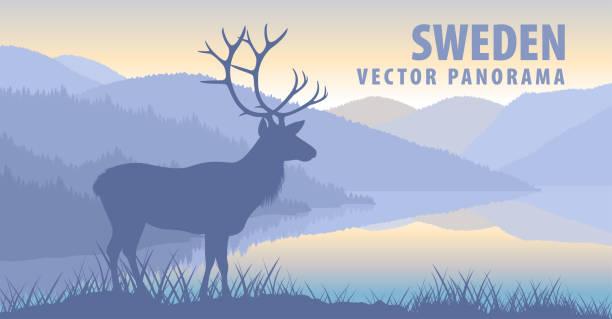 bildbanksillustrationer, clip art samt tecknat material och ikoner med vektor panorama över sverige med viltskav - summer sweden