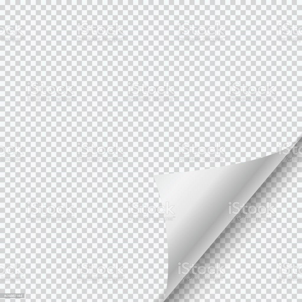 Vector paper page curl with shadow on transparent background. vector art illustration
