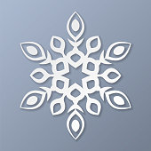 Vector paper snowflake on gray background