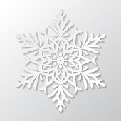 Vector paper snowflake on white background