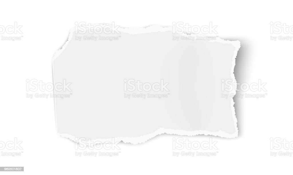 Vector paper wisp isolated on white background. Template paper design. vector art illustration