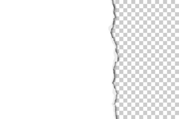 vektorteil des blattes aus weißem papier, das von oben nach unten mit transparentem hintergrund gerissen wird. papiervorlage. - zerrissen stock-grafiken, -clipart, -cartoons und -symbole
