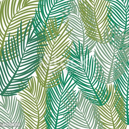 istock Vector pattern. Leaves of a tropical palm tree.  Banana leaf bac 842798710