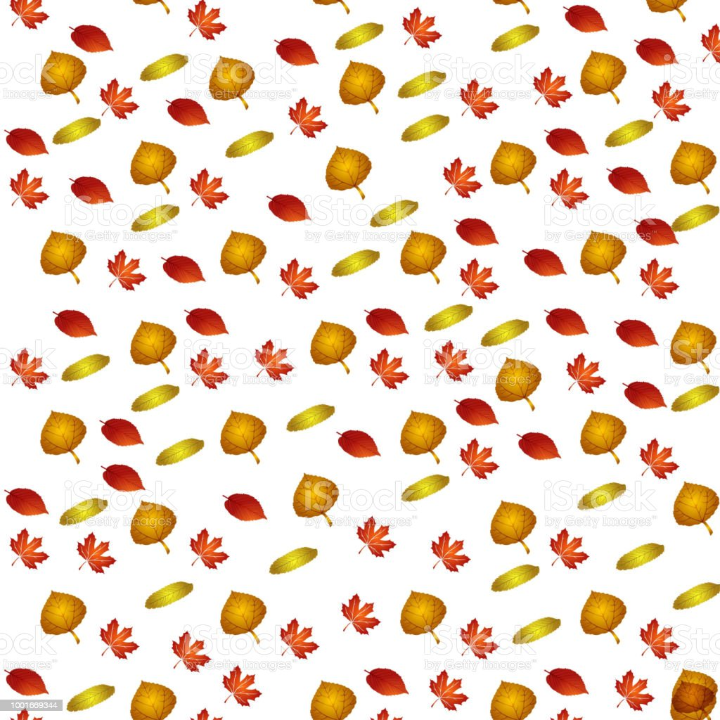 Vector Pattern With Autumn Leafes Floral Background Autmn Fall