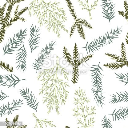 istock Vector  pattern with Christmas plants. 1205014284