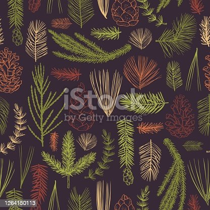 istock Vector   pattern with Christmas plants 1264150113