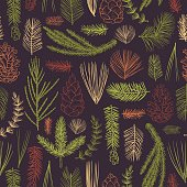 Vector  seamless pattern with hand drawn branches and cones of coniferous trees. Christmas plants.