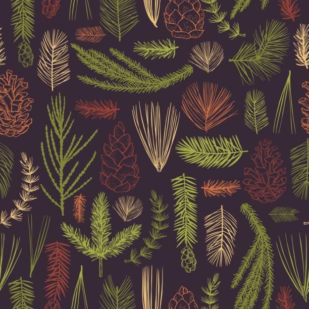 stockillustraties, clipart, cartoons en iconen met vectorpatroon met de installaties van kerstmis - pinaceae