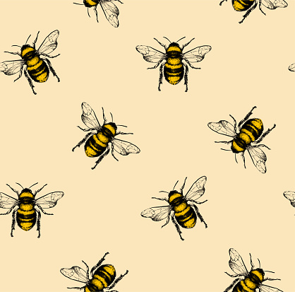 Vector pattern with honey bee.