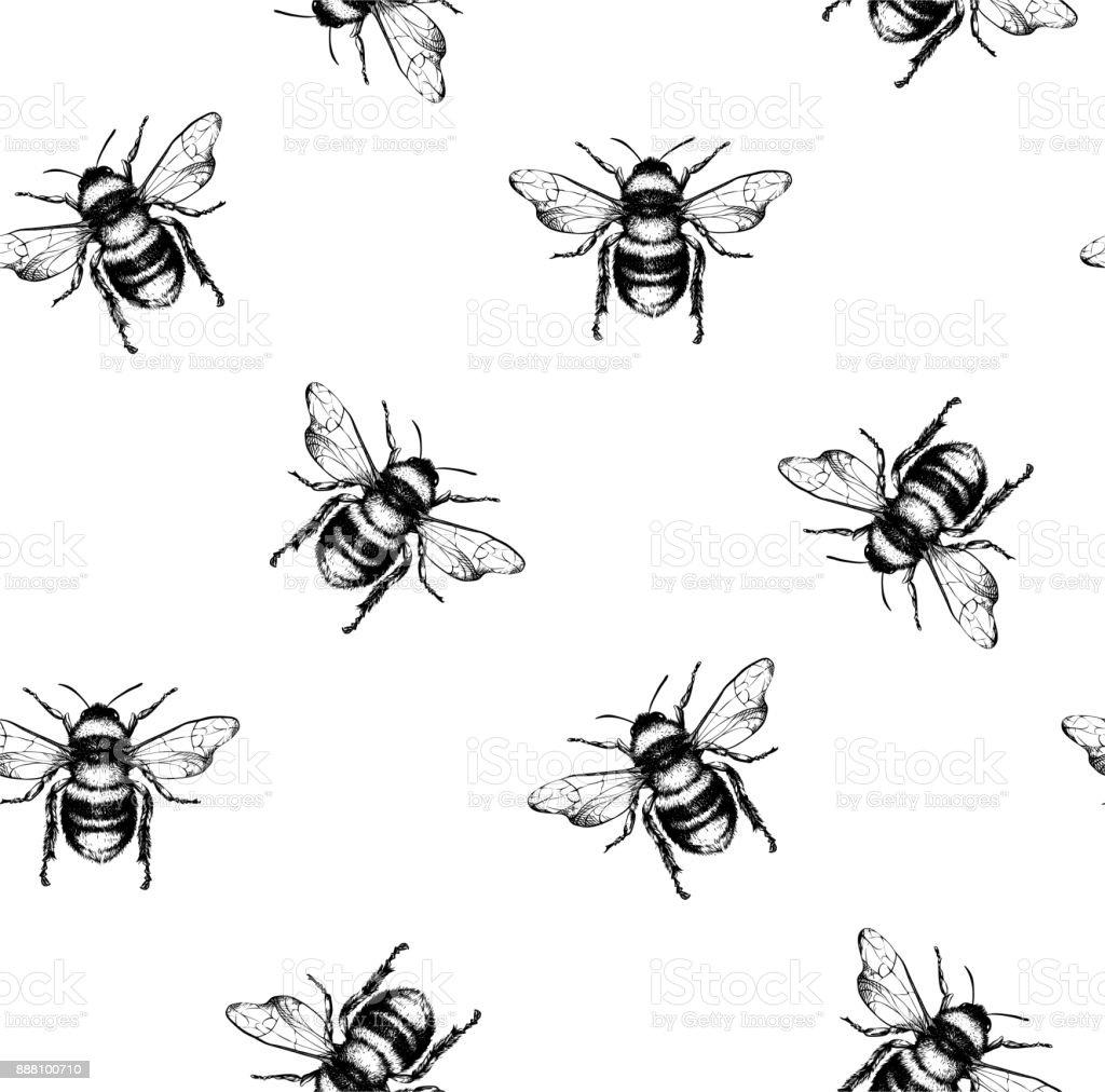 Padrão de vetor com abelhas. - ilustração de arte em vetor