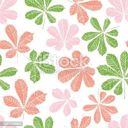 istock Vector  pattern with leaves of chestnut. 1257458903