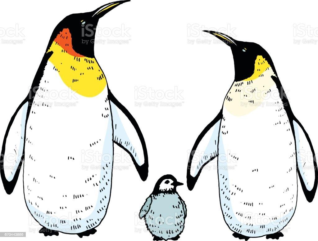 赤ちゃんイラスト ベクトル ペンギンの家族 イギリスのベクターアート