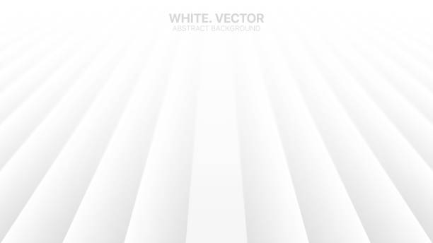 Vector Perspective Lines Clear Blank Subtle Business White Abstract Background Vector Perspective Lines Clear Blank Subtle Business White Abstract Background. Conceptual Futuristic Technology 3D Minimalist Illustration. Light Colorless Empty Surface Wallpaper. Blurred Backdrop white background stock illustrations
