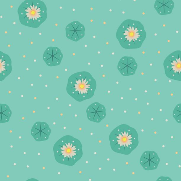 Vector peyote lophophora cactus seamless pattern vector art illustration