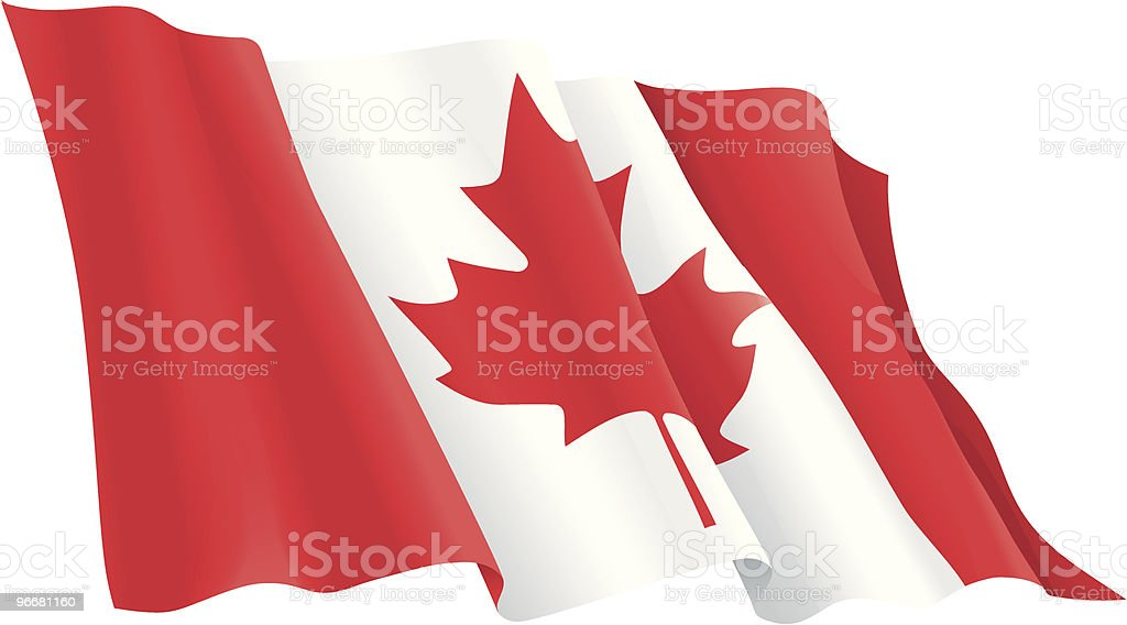 Vector Photo of wavy Canadian Flag vector art illustration