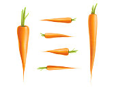 Vector photo-realistic carrot set isolated