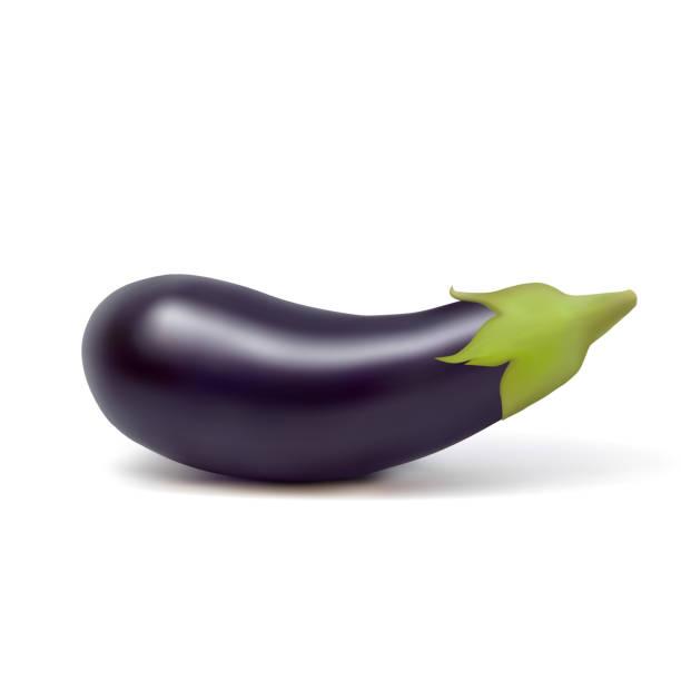 illustrazioni stock, clip art, cartoni animati e icone di tendenza di vector photo-realistic fresh aubergine on a white background - melanzane