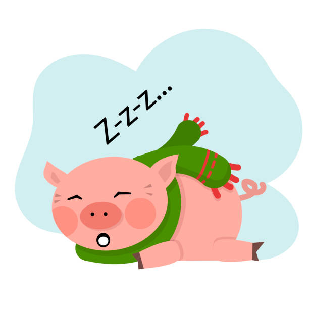 Vector Pig sleep vector art illustration
