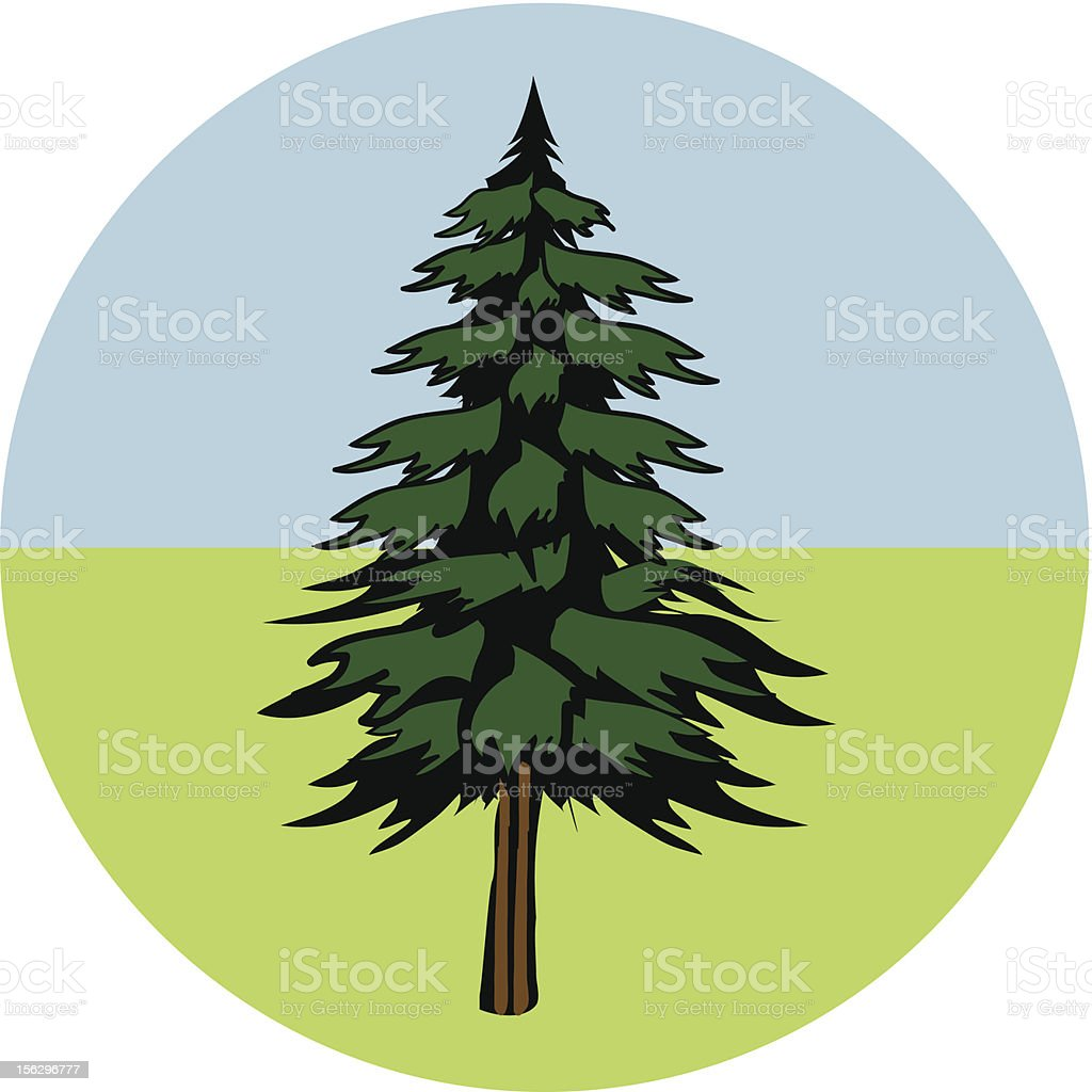 Vector Pine Tree royalty-free vector pine tree stock vector art & more images of autumn