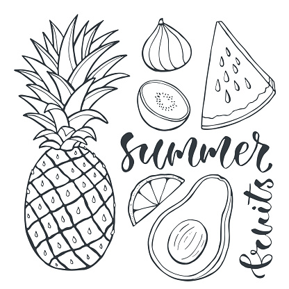 Vector pineapple and sliced fruits. Food illustration for print design, label and posters.