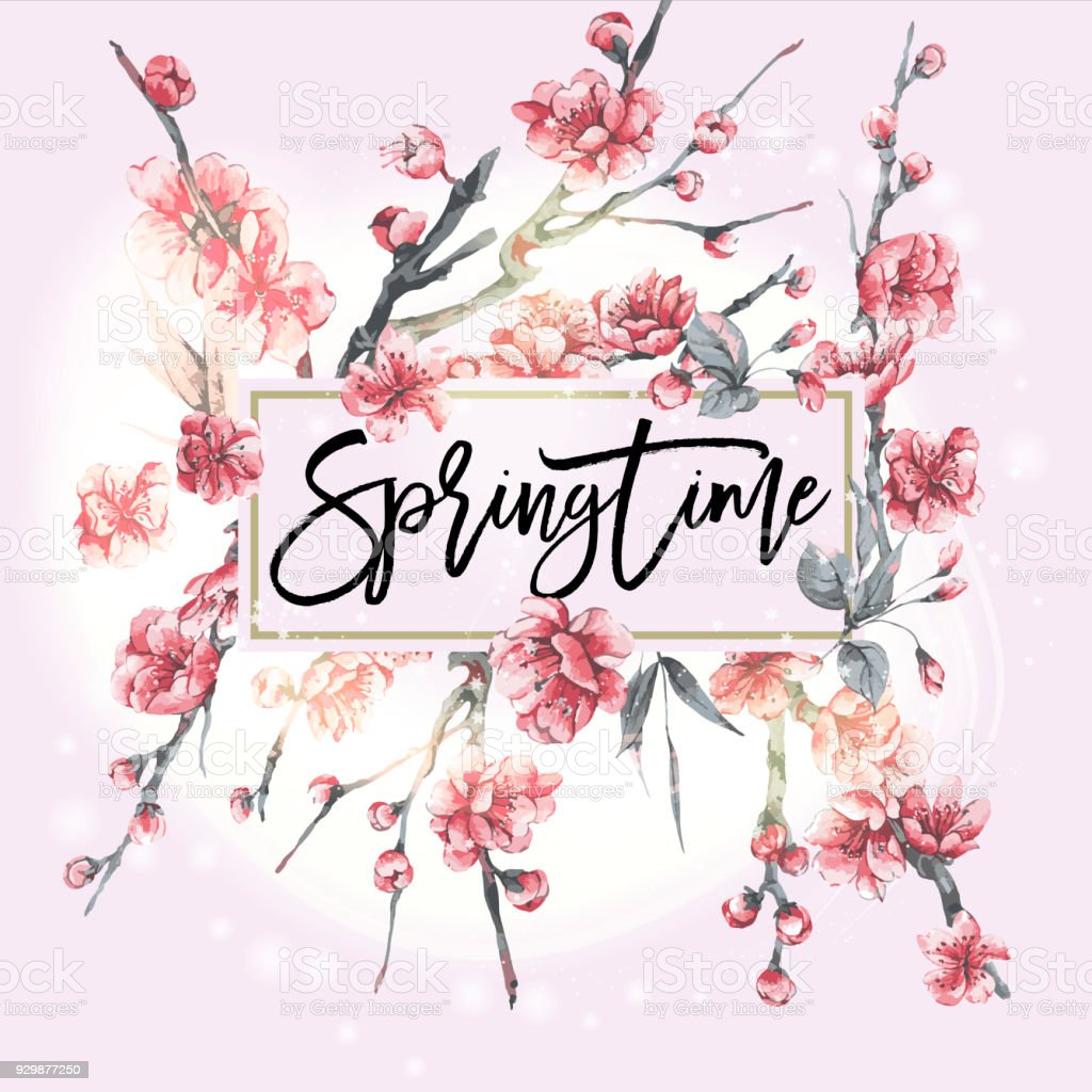 Vektor rosa blühende Zweige der Kirsche – Vektorgrafik