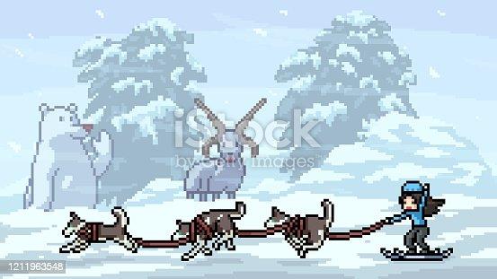 istock vector pixel art scene husky ski 1211963548