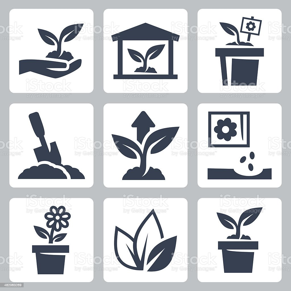 Vector plant growing icons set vector art illustration