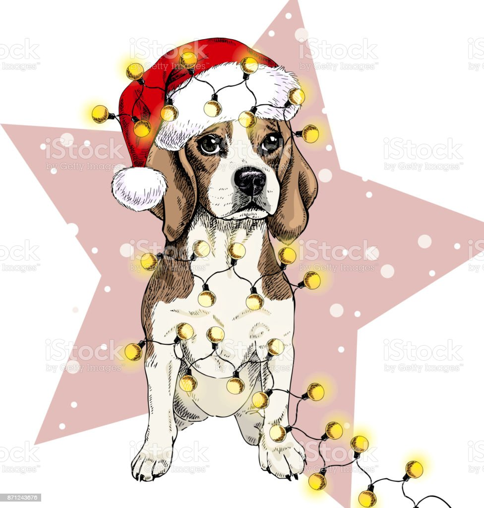Retrato de vectores de perro beagle santa sombrero Navidad luces guirnalda. Aislado en estrellas y nieve. Skecthed color illustraion. Navidad, Navidad, año nuevo. Decoración del partido, promoción, tarjeta de felicitación - ilustración de arte vectorial