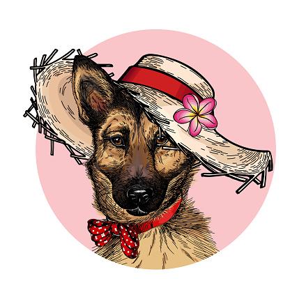 Vector portrait of german shepherd dog wearing straw hat, flower and polka dot bandana. Summer fashion illustration. Hand drawn pet portait. Poster, t-shirt print, holiday, postcard, summertime.
