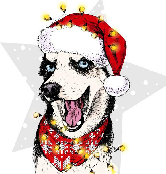 Drawing Of A Puppy Wearing Christmas Santa Hat Clip Art ...
