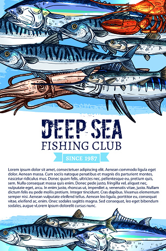 Vector poster of fishing club fish seafood catch