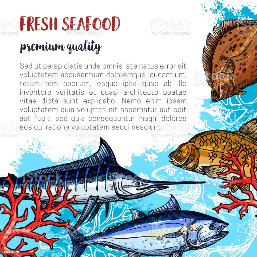 Vector poster of fresh seafood and fish food vector art illustration