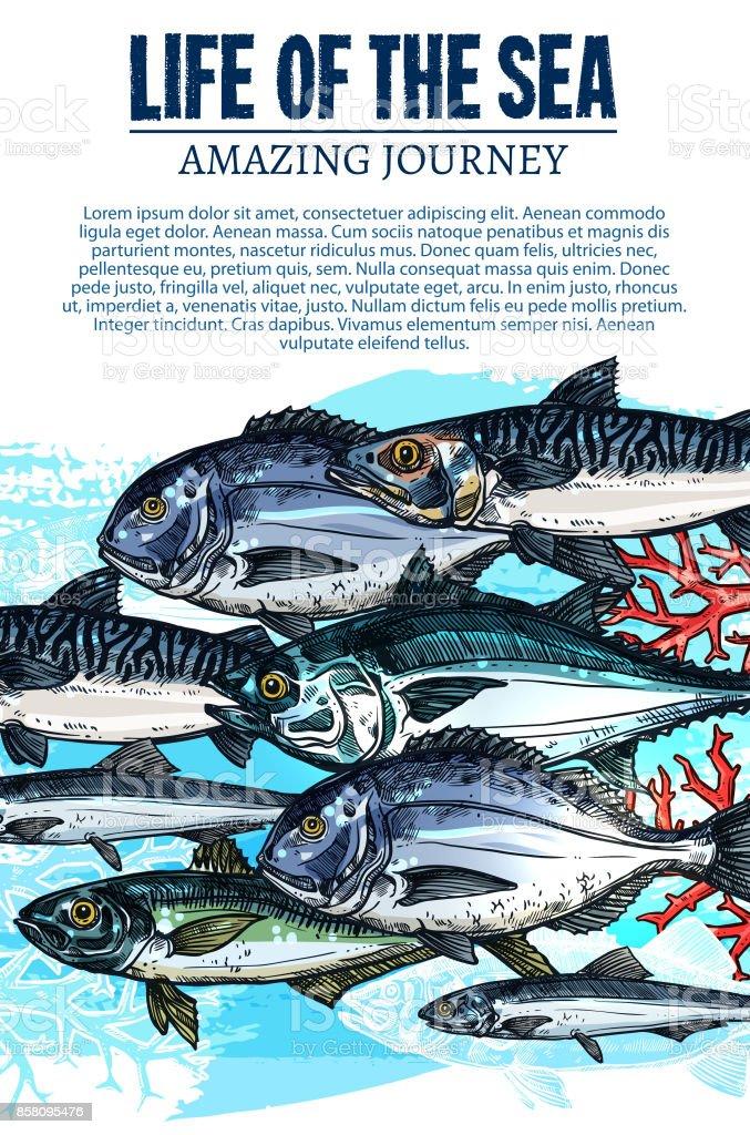 Vector poster of sea fish sketch ocean fishes life vector art illustration