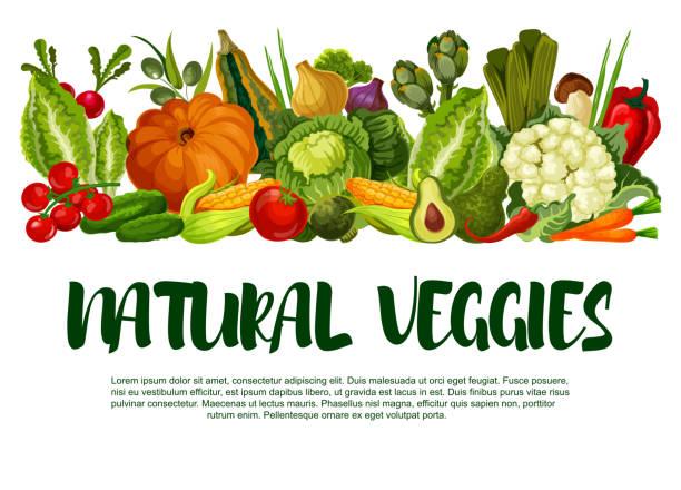 vector poster of vegetables or veggies harvest - vegetable stock illustrations, clip art, cartoons, & icons