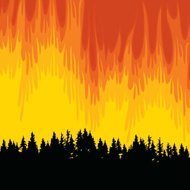 bildbanksillustrationer, clip art samt tecknat material och ikoner med vektoraffisch på temat skogsbränder och skogsbränder - skog brand