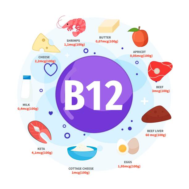 ilustrações de stock, clip art, desenhos animados e ícones de vector poster products with vitamin b12. - fail cooking