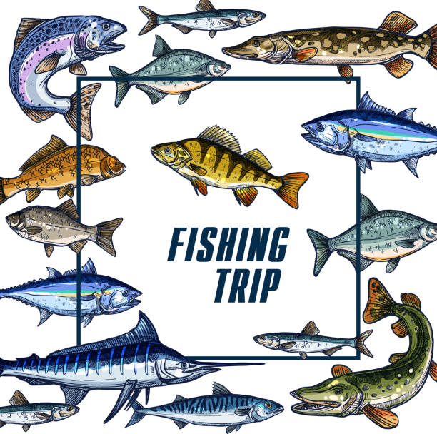 Vector poster template for fishing trip sketch vector art illustration