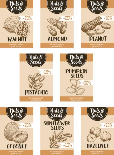 vektor preis skizze plakate von nüssen und früchten samen - nuss stock-grafiken, -clipart, -cartoons und -symbole